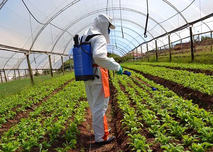 Aplicação de herbicida com EPI.