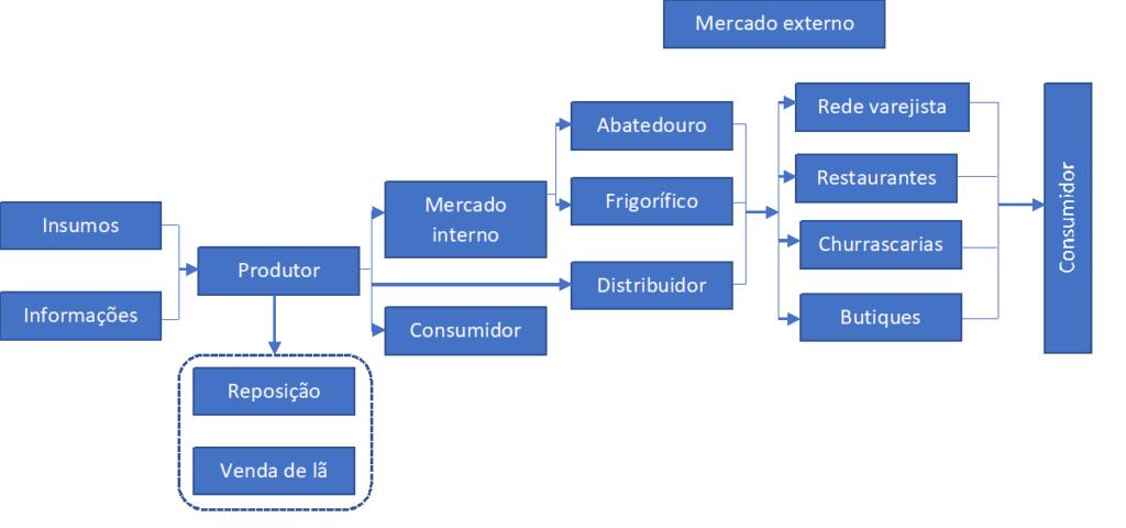 Figura 2 - Fluxograma da Cadeia da Carne Bovina. Elaboração: Agromove.