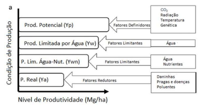 Figura 2 - Gráfico indicando os tipos de produção. Fonte: Meteorologia Agrícola ESALQ-USP.