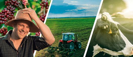 Figura 2 - Agricultor feliz, representando os ganhos gerados pelo uso de bioinoculantes e sua redução de impactos no ambiente.