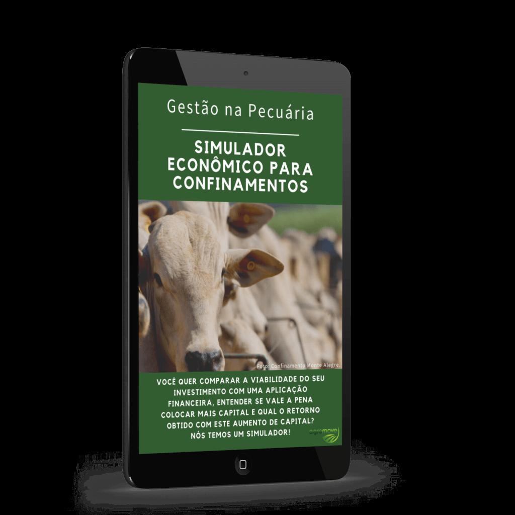 Simulador Econômico para Confinamentos