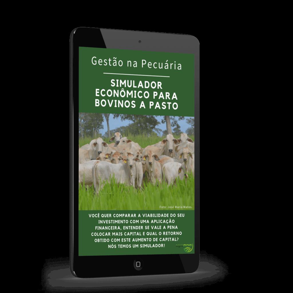 Simulador Econômico para Bovinos a Pasto