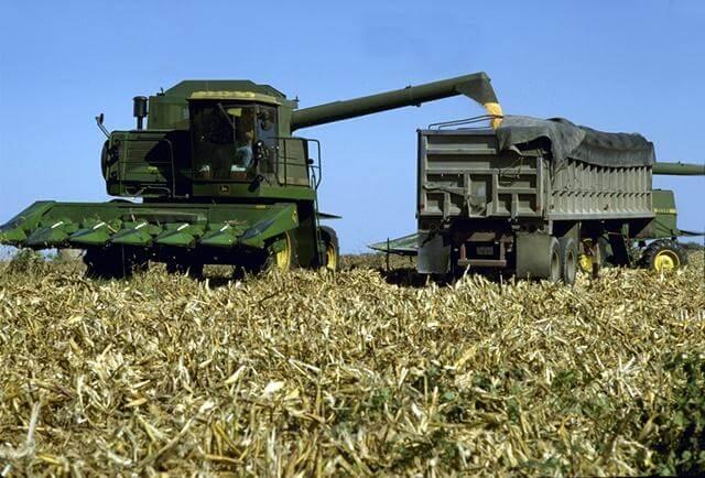 Corte para silagem. Foto: USDA.