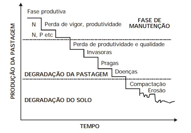 Representação esquemática do processo de degradação em pastagens em suas diferentes etapas no tempo (Macedo, 2000). Fonte: Embrapa.