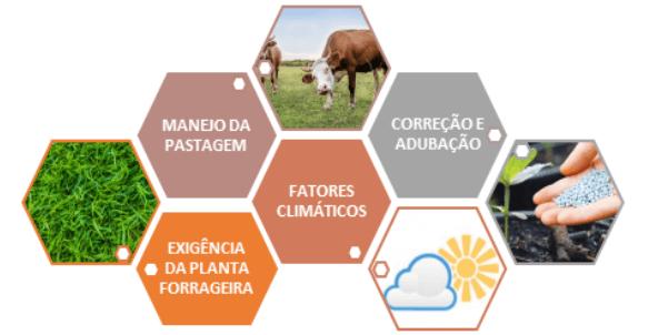 Fatores que englobam o sistema de produção de pastagens. Fonte: GEFEP, USP.