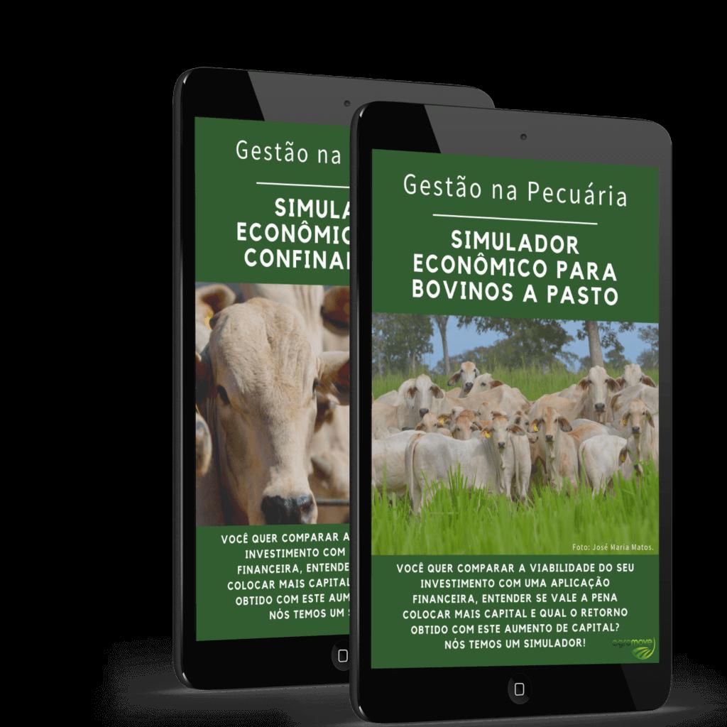 Imagem dos Simuladores Econômicos para Bovinos a Pasto e para Confinamentos.