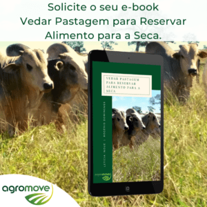 e-book Vedação