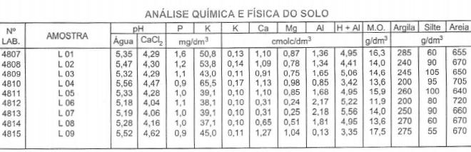 """Figura 1: Laudo de análise química do solo, feita pelo laboratório de análise de solo """"Solo Análise"""", para a interpretação da análise de solo. Fonte: Arquivo Agromove."""