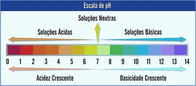 Figura 3: Escala de pH. Fonte: Toda Matéria.