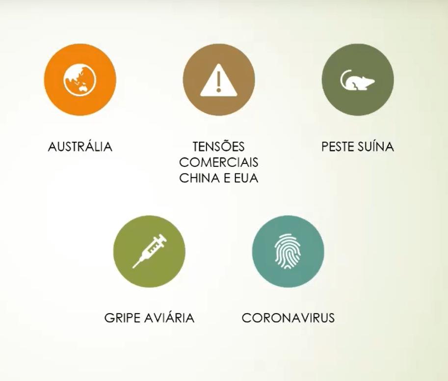 Slide Webinar Perspectivas para a Pecuária de Corte em 2020. Fonte: Agromove.