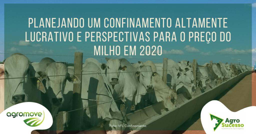 Perspectivas para o Milho em 2020