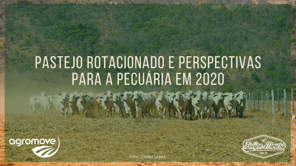 Perspectivas para a Pecuária de Corte em 2020