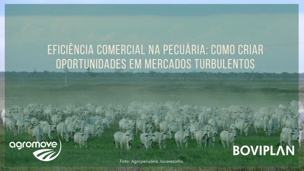 Webinar Eficiência Comercial na Pecuária: como criar oportunidades em mercados turbulentos.