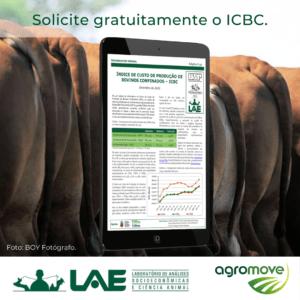 IPAD com o Informativo de custo de produção de bovinos confinados e bois ao fundo.