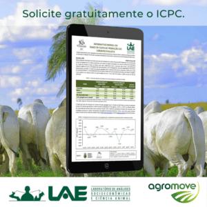 IPad com a imagem do Informativo de custos de criação de cordeirosdo Lae
