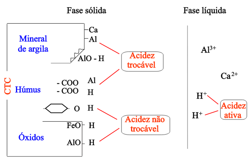 Figura 1: Representação dos tipos de acidez do solo. Fonte: Vitti, 2020.