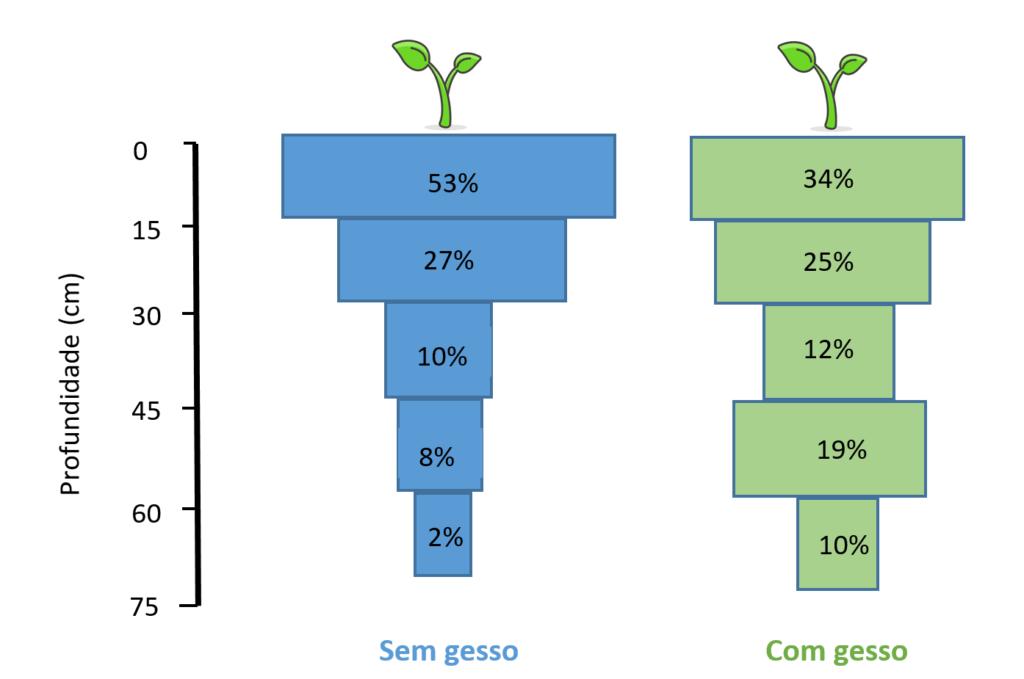 Figura 2. Práticas Corretivas - Distribuição relativa do sistema radicular de milho (Cargill III) cultivado na estação seca de 1983, 90 dias após emergência (lançamento de espiga), sem e com aplicação de gesso, no perfil de um solo LE argiloso. Fonte: Sousa e Ritchey (1986).