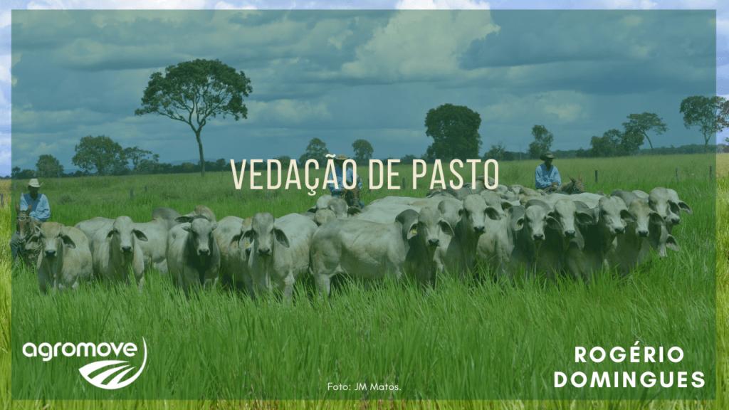 Webinar Vedação de Pastagem
