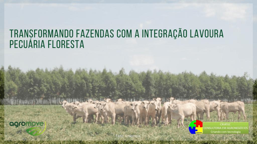 Webinar Transformando Fazendas com a Integração Lavoura Pecuária Floresta