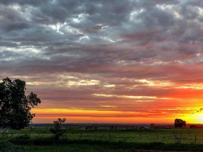 Gado no Pasto e o Sol se pondo no horizonte.