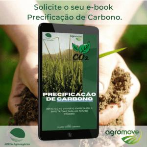e-book Precificação de Carbono