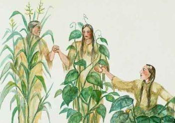 Fig. 2. As três irmãs. Fonte: Iowa Agriculture Literacy Foundation.