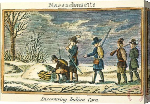 Fig. 1. Colonos ingleses encontram o milho indígena, em Massachusetts. Fonte: Seguindo os passos da história.