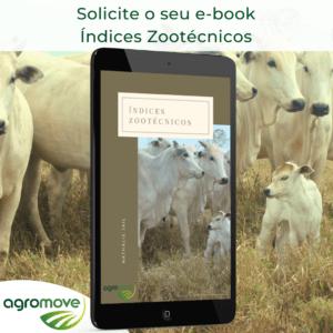 e-book Índices Zootécnicos