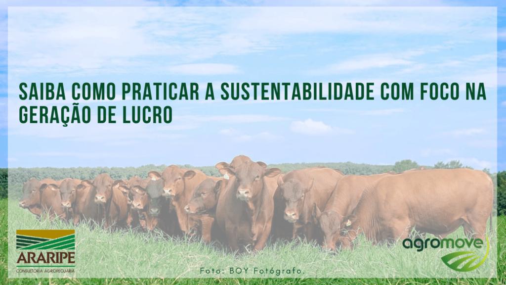 Saiba como praticar a sustentabilidade com foco na geração de lucro